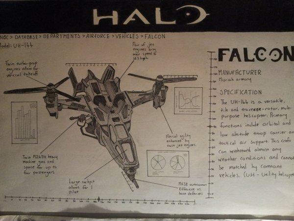 Falcon final