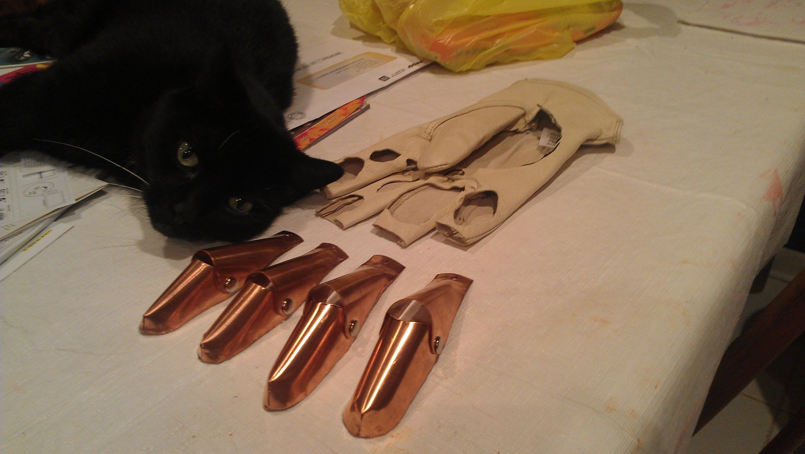 Kitty and the Glove